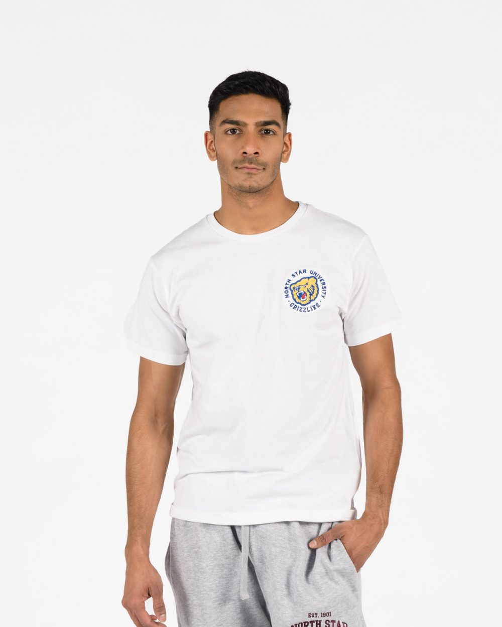 Premium T-Shirt 102 in white on man