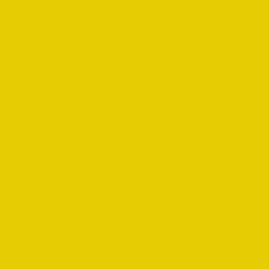 Slicker Yellow